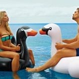Giant Inflatable BLACK SWAN3
